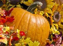 πτώση pumppkin Στοκ Εικόνες