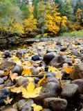 πτώση yosemite Στοκ φωτογραφία με δικαίωμα ελεύθερης χρήσης
