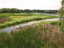 Πυκνά, πολύβλαστη χλόη και ένας βαθύς ποταμός Όμορφο θερινό τοπίο Στοκ Φωτογραφία