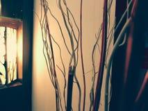 πυκνή φανταστική νησιών φεγγαριών βλάστηση δέντρων νύχτας ρομαντική Στοκ Εικόνα