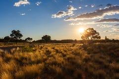 Πυράκτωση ηλιοβασιλέματος στοκ εικόνα με δικαίωμα ελεύθερης χρήσης