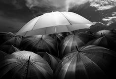 πυράκτωση φω'των ομπρελών που ξεχωρίζει από το πλήθος της σκοτεινής ομπρέλας Στοκ Εικόνες