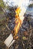 Πυρά προσκόπων στη φύση Στοκ εικόνα με δικαίωμα ελεύθερης χρήσης