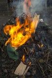 Πυρά προσκόπων στη φύση Στοκ φωτογραφία με δικαίωμα ελεύθερης χρήσης