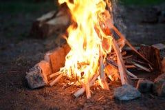 Πυρά προσκόπων στο δάσος το καλοκαίρι Στοκ εικόνες με δικαίωμα ελεύθερης χρήσης