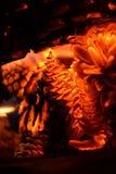 Πυρακτωμένη χόβολη - κώνος Στοκ Εικόνες