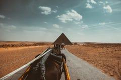 πυραμίδα, Αίγυπτος, τρόπος, ουρανός, σύννεφα, έρημος, άμμος, άλογα Στοκ Εικόνες
