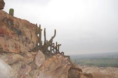 πυραμίδα κάκτων tucume στοκ φωτογραφίες με δικαίωμα ελεύθερης χρήσης