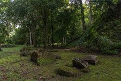 Πυραμίδα και ο ναός στο πάρκο Tikal Αντικείμενο επίσκεψης στη Γουατεμάλα με τους των Μάγια ναούς και τις εθιμοτυπικές καταστροφές στοκ φωτογραφία