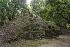 Πυραμίδα και ο ναός στο πάρκο Tikal Αντικείμενο επίσκεψης στη Γουατεμάλα με τους των Μάγια ναούς και τις εθιμοτυπικές καταστροφές στοκ φωτογραφία με δικαίωμα ελεύθερης χρήσης