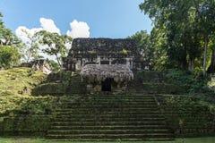 Πυραμίδα και ο ναός στο πάρκο Tikal Αντικείμενο επίσκεψης στη Γουατεμάλα με τους των Μάγια ναούς και τις εθιμοτυπικές καταστροφές στοκ εικόνα με δικαίωμα ελεύθερης χρήσης