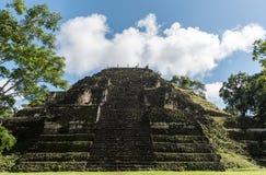 Πυραμίδα και ο ναός στο πάρκο Tikal Αντικείμενο επίσκεψης στη Γουατεμάλα με τους των Μάγια ναούς και τις εθιμοτυπικές καταστροφές στοκ εικόνες