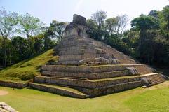 πυραμίδα του Μεξικού palenque Στοκ Εικόνα