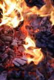 Πυρκαγιάς ξύλινη κινηματογράφηση σε πρώτο πλάνο τέφρας άνθρακα ηλέκτρινη Στοκ εικόνα με δικαίωμα ελεύθερης χρήσης