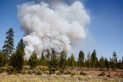 Πυρκαγιά αρχής στοκ φωτογραφία