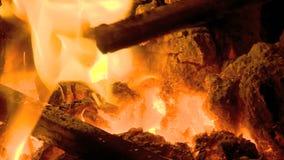 πυρκαγιά, γούνα, όργανα, θερμοκρασία απόθεμα βίντεο
