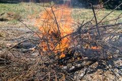 Πυρκαγιά θαμνότοπων σε ένα κατώφλι στοκ εικόνες με δικαίωμα ελεύθερης χρήσης