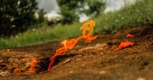 Πυρκαγιά διαβίωσης Στοκ Εικόνες