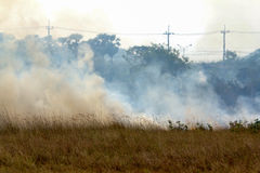 Πυρκαγιά λιβαδιών Στοκ Εικόνα