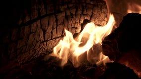 Πυρκαγιά και ξύλο έξοχο σε σε αργή κίνηση, κινηματογράφηση σε πρώτο πλάνο απόθεμα βίντεο