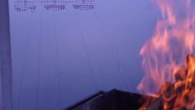 Πυρκαγιά, κούτσουρα, BBQ, ποταμός, φύση απόθεμα βίντεο