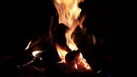 Πυρκαγιά σε μια εστία απόθεμα βίντεο