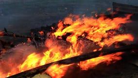 Πυρκαγιά στα περιθώρια απόθεμα βίντεο
