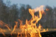 Πυρκαγιά στις δασικές πυρκαγιές ανοίξεων στοκ φωτογραφίες