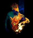 Πυρκαγιά στοιχείων Στοκ εικόνες με δικαίωμα ελεύθερης χρήσης