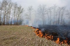 Πυρκαγιά στο πεδίο Στοκ Φωτογραφία
