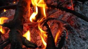 Πυρκαγιά στρατόπεδων κάτω από ένα δοχείο απόθεμα βίντεο