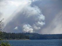 Πυρκαγιά του Μπους Στοκ Φωτογραφίες