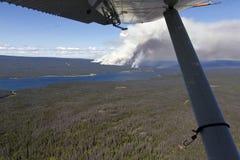 Πυρκαγιά του Μπους Στοκ φωτογραφία με δικαίωμα ελεύθερης χρήσης