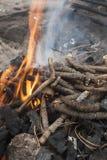 Πυρκαγιά των κλάδων έλατου στη σχάρα Στοκ Εικόνες