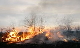 πυρκαγιά φωτεινότητας στοκ εικόνες