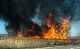 Πυρκαγιά! Στοκ Φωτογραφίες