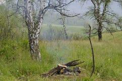 Πυρκαγιά Andscape στο ξύλο με έναν καπνό Στοκ φωτογραφία με δικαίωμα ελεύθερης χρήσης