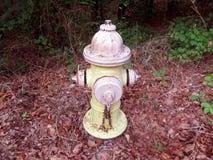 Πυρκαγιά Hidrant Στοκ Εικόνα