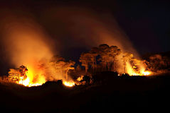 πυρκαγιές θαμνότοπων Στοκ Εικόνες