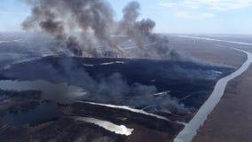 Πυρκαγιές, μεγάλη γρήγορη κίνηση πυρκαγιάς από το ξηρό λιβάδι με τον καπνό που πηγαίνει επάνω στον ουρανό κοντά στον ποταμό, άποψ απόθεμα βίντεο