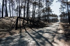Πυρκαγιές στην Πορτογαλία στοκ φωτογραφία