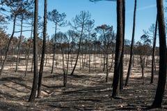 Πυρκαγιές στην Πορτογαλία στοκ εικόνες