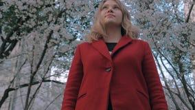 Πυροβολισμός αναρτήρων steadicam του ελκυστικού ξανθού κοριτσιού σε ένα κόκκινο παλτό που στέκεται στην αλέα sakura, που απολαμβά απόθεμα βίντεο