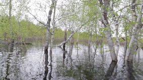 Πυροβολισμός από τον ποταμό κατά τη διάρκεια της πλημμύρας άνοιξη φιλμ μικρού μήκους