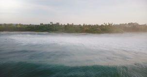 Πυροβολισμός κηφήνων lockdown των όμορφων ήρεμων ωκεάνιων κυμάτων με τον αφρό που φθάνει στη γραφική ακτή με τα τροπικά δέντρα κα φιλμ μικρού μήκους