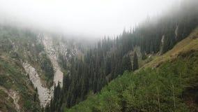 Πυροβολισμός με τον κηφήνα Πέταγμα πέρα από το δάσος στην ομίχλη Οι άνθρωποι περπατούν κατά μήκος της πορείας βουνά πεζοπορώ φιλμ μικρού μήκους