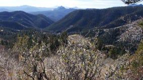 Πυροβοληθείσα ολισθαίνων ρυθμιστής ώθηση κοιλάδων βουνών μέσα απόθεμα βίντεο