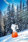 Πυροβόλο χιονιού Στοκ φωτογραφία με δικαίωμα ελεύθερης χρήσης