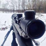 Πυροβόλο όπλο στα ξύλα Στοκ Εικόνες