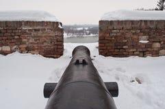 πυροβόλο Στοκ εικόνες με δικαίωμα ελεύθερης χρήσης